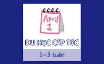 du-hoc-cap-toc
