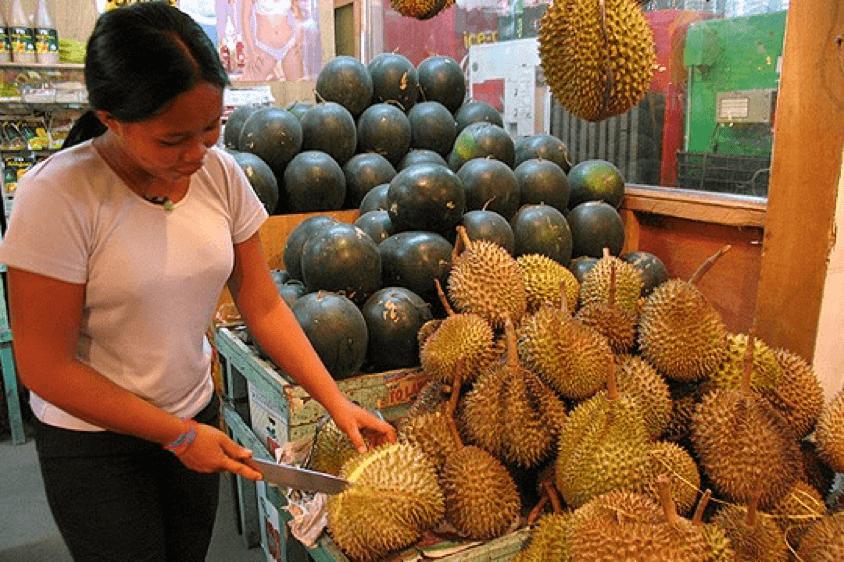 dac-diem-khi-hau-tai-philippines-8